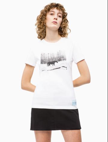女士新款Andy Warhol系列纯棉圆领短袖T恤 J211676